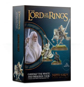 ord of The Rings: Gandalf The White & Peregrin Took 1