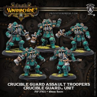 Crucible Guard Assault Troopers 1