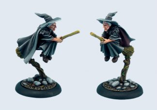 Discworld Esme on broom (1) 1