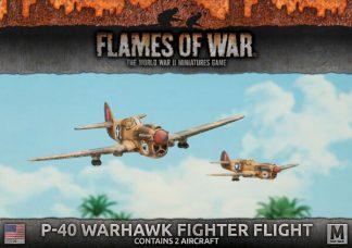 P40 Warhawk Fighter Flight (2x) 1