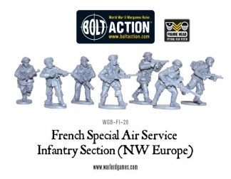 French SAS (NWE) Sections 1