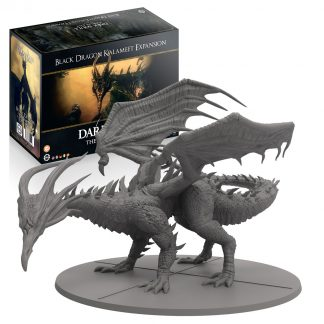 Dark Souls: Black Dragon Kalameet 1