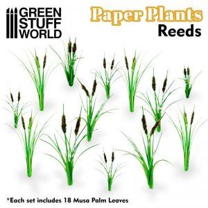 Green Stuff World   Plants & Flowers Paper Plants - Reeds - 8436574508741ES - 8436574508741