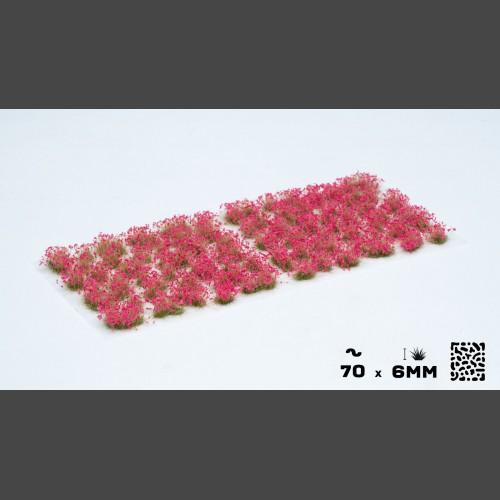 Gamers Grass   Plants & Flowers Pink Flowers - GGF-PI - 738956789938